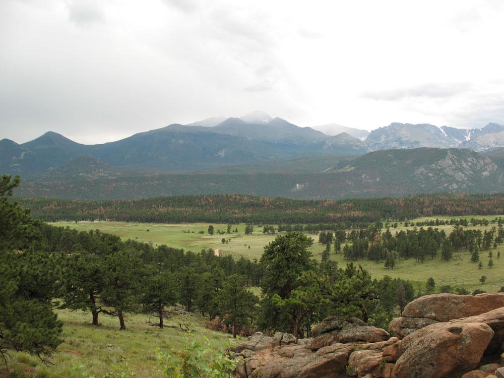 mountain-meadow02